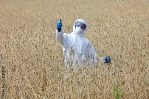 agricultural engineer  on field of  gmo crops