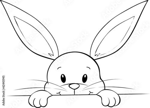 lunzendes kaninchen stockfotos und lizenzfreie vektoren auf bild 62443945. Black Bedroom Furniture Sets. Home Design Ideas