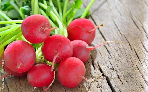 bunch of fresh radish