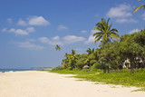 Tropical beach lanscape in Sri lanka