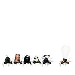 Team ants