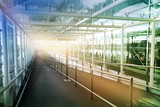 Glass tunnel with sun light British airport interior