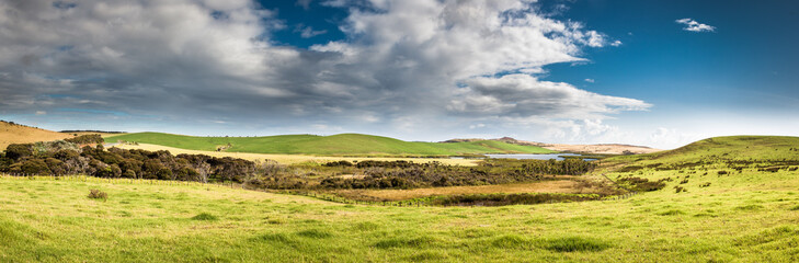 New Zealand pastures panorama, Cape Reinga