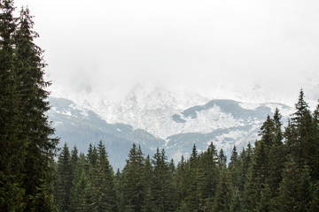 Tatras Mountains covered with snow in winter - Poland