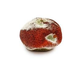 Rotten mandarin