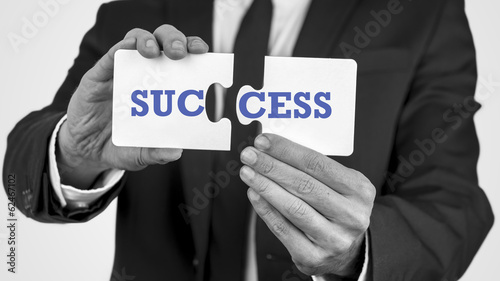 Two puzzle pieces with the word success