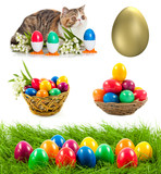 Easter eggs in basket.  Colorful Easter eggs. Easter concept