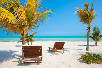 Two Beach Chairs near palm trees on tropical Holbox island
