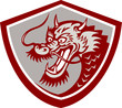 Chinese Red Dragon Head Shield
