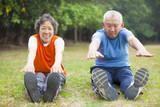 Senior healthy fitness couple