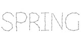 Vector modern spring word on white background