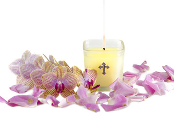 Candle, Orchids, and Rose Petals