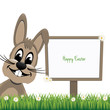 happy bunny sign board daisy meadow isolated