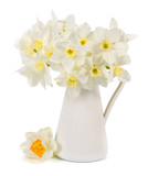 bouquet of fresh narcissus