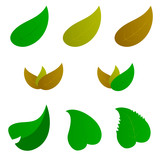 leaf color vector