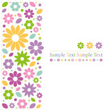Fototapety colorful flowers greeting card