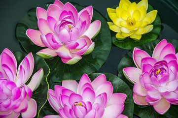 Artificial lotus flowers