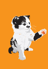 Vector-Kitten in color on a orange background