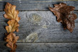 Dry oak leaves on grey boards