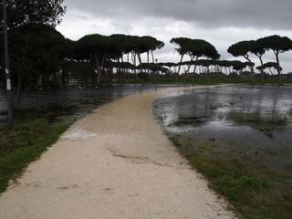 Effetti delle piogge sul parco cittadino