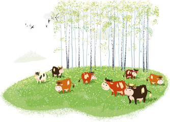 Herd of cows grazing on meadow on birches background