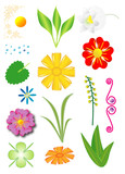 Set of flowers and plants, objects isolated, vector