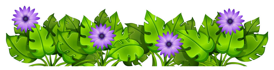 Green leafy plants with flowers