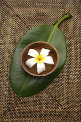 frangipani flower in bowl and leaf on burlap texture mat