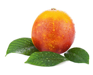 Ripe red blood oranges with green leaves isolated on white backg