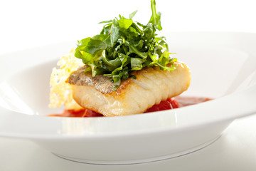 Halibut Fillet