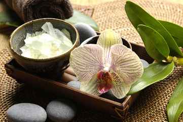 Spa wellness products