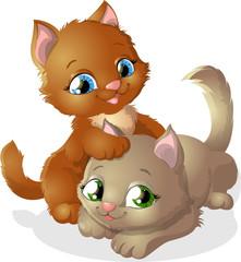 play kitten