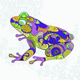 Colored frog, toad. Decorative pattern.