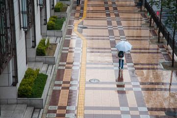 広い歩道を傘を差して歩く人