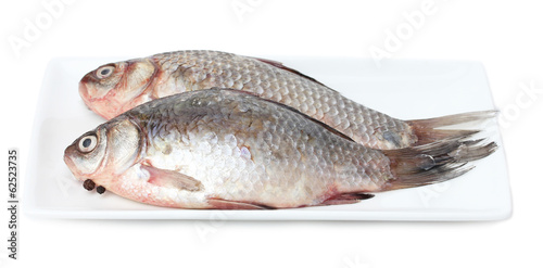 Fresh fishes on plate isolated on white