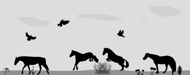 Horses Jumping, Birds Fly in Nature. Vector Illustration.