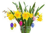daffodil flowers with catkins and easter eggs