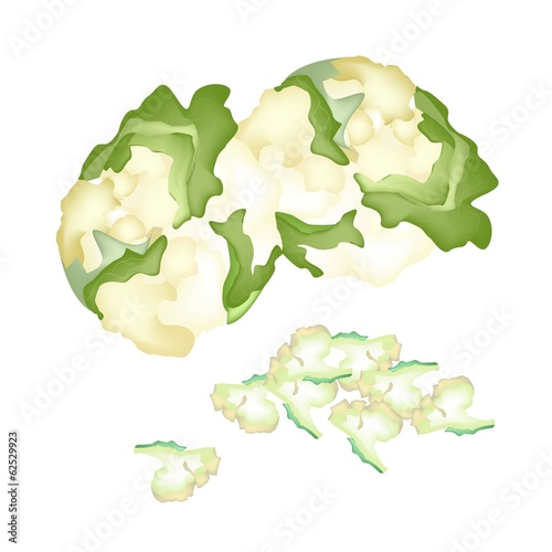 Fresh White Cauliflower on A White Background