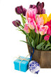 Bunch of multicolored tulips flowers