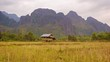Laos. Empty rice field with straw on a background of mountains