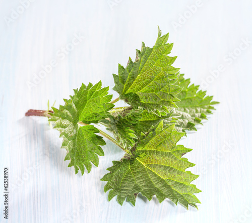 Fresh nettle leaves on a wooden table