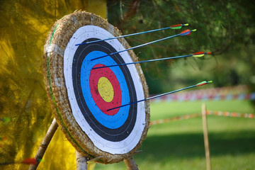 Arrows missed target. concept of fail-diligent
