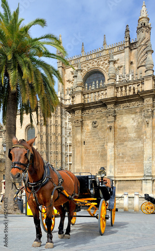 Horsedrawn carriage waiting in front of the Seville cathedral