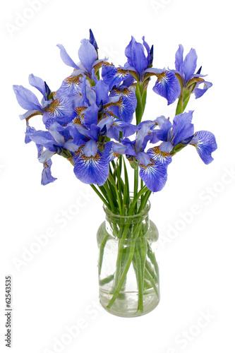 Foto op Canvas Iris iris flowers in vase