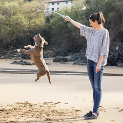 Young woman with ball playingl with dog in the beach.