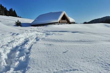 Alpi Dolomiti, Trentino  Alto Adige , baita nella neve