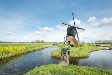 Typical Dutch windmill in springtime