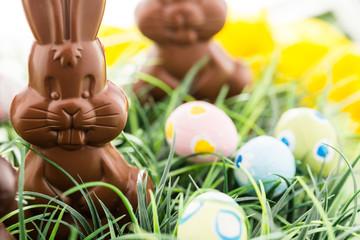 Chocolate bunnies