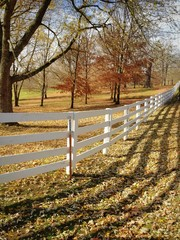 Sunny autumn day at country side