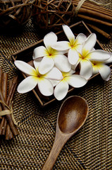 frangipani flower in wicker basket and wooden spoon